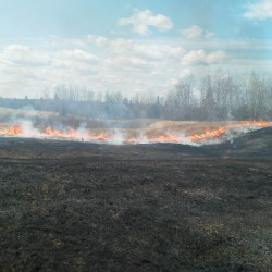 Conditions spark series of grass fires in Maine