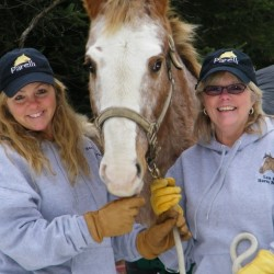 "LAST STOP HORSE RESCUE 501C3 ""Sisters saving horses with the support of many."""