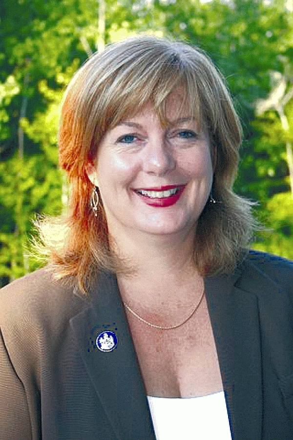 State Sen. Debra Plowman