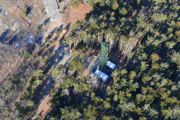 One of the relatively recent camouflaged cellphone towers (fashioned by an out-of-state outfit to look like a big tree) is seen on MDI in Salisbury Cove in February 2012.