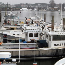 Lawmakers request disaster funding for Northeast fishermen
