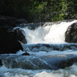 The 'wild' in the Allagash Wilderness Waterway