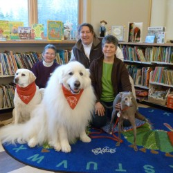 Three national canine organizations recognize Bar Harbor dog