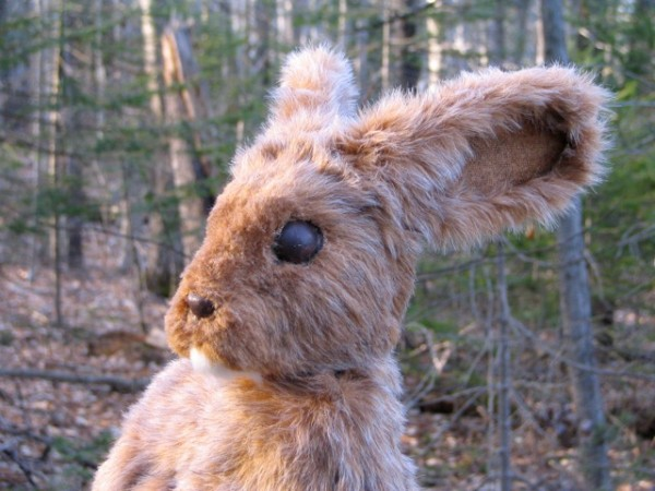 &quotThe Velveteen Rabbit&quot will be performed at noon April 28, at Ellsworth High School Auditorium.