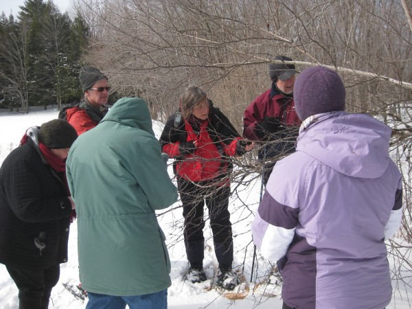 "Gudrun Keszöcze (center), naturalist of Hirundo Wildlife Refuge in Alton and Old Town, identifies trees and shrubs in winter during the ""Buds, Twigs and Trees"" program she led on Feb. 27, 2011."