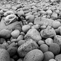 Pebbles by Charles Laurier Dufour earned a 3rd Place finish in the 2012 Maine Photography Show on exhibit at the BRAF Gallery in Boothbay Harbor.