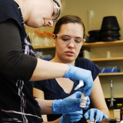 Robin Spielmann (left) a second-year pharmacy student from Indiana, and Krystal Lacombe (right), a fourth-year pharmacy student from Winslow, extract RNA as part of their research at the University of New England's Genomics, Analytics and Proteomics core facility in Portland on May 15, 2012. The equipment the students use has been purchased with funds from the college and from past research and development bonds approved by Maine voters.