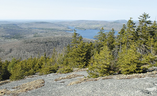 Until 1976, skiers who frequented the Bald Mountain Ski Area in Dedham could pause on this summit ledge and enjoy a panoramic view that includes Phillips Lake and the Dedham Hills. The ski area once had at least 12 trails; today little evidence remains atop Bald Mountain that the ski area ever existed.