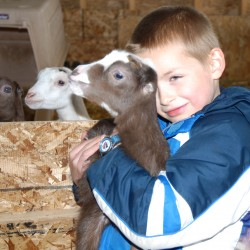 City slickers turned goat farmers find peace, prosperity on 17 acres
