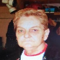 Woman moving to Bethel from Lewiston goes missing