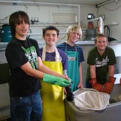 Herring Gut School of Roots students work in the fish hatchery.
