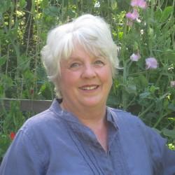 Carol Lord Klitch