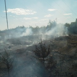 Forest service works to control fire in Danforth