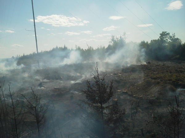 Firefighters from the Maine Forest Service, Danforth and Moosehorn National Wildlife Refuge were battling a 4- to 5-acre fire on top of Flagstaff Mountain in northern Washington County on Sunday. A wind energy test tower on the site was damaged by the fire.