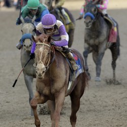 Bodemeister is early 4-1 favorite for Kentucky Derby