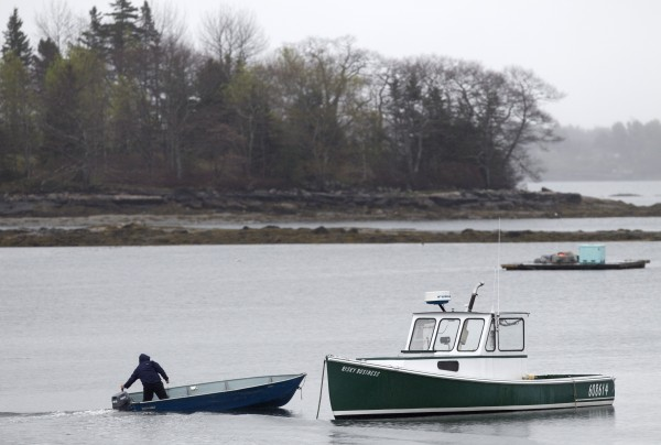 A fisherman motors his skiff out to a lobster boat moored in Friendship on Thursday, May 10, 2012. Two lobster boats in the harbor were recently sunk by vandals.