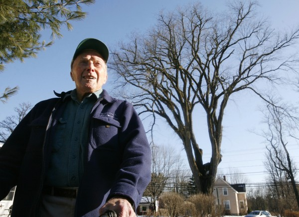 In this Dec. 14, 2009 file photo, Frank Knight stands in front of New England''s tallest elm tree, known as Herbie, in Yarmouth.
