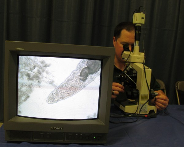 Fred Gallant of the Maine Department of Environmental Protection shows microscopic organisms found in sewer sludge on a television screen for students at the Southern Maine Children's Water Festival to see Friday, May 18, 2012, in Portland. The organisms feed on pollutants in the wastewater, Gallant said, and allow cleaner water to be discharged from the treatment facility.