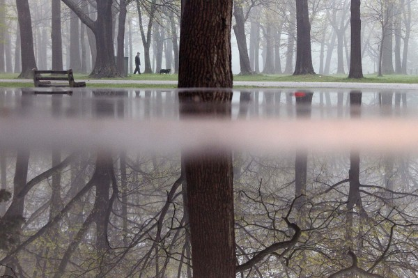 Reflected in a puddle, a man walks his dog in the morning fog in Portland's Deering Oaks Park on Wednesday, May 9, 2012.