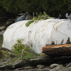 DEP awaiting results of sediment tests at Bucksport derailment site