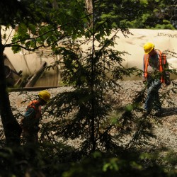 DEP: 4,000 to 6,000 gallons of paper chemical spilled in Bucksport derailment