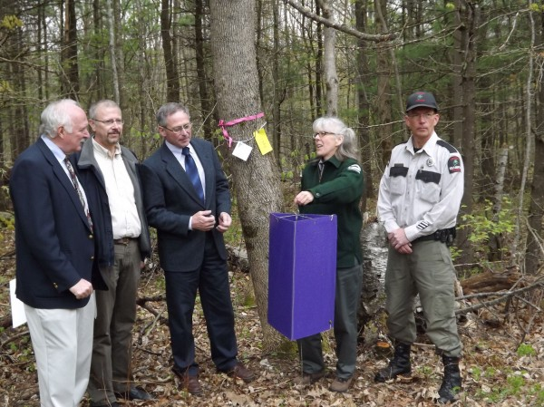 Colleen Teerling (second from right), Maine Forest Service entomologist, demonstrates how the emerald ash borer trap works during a press conference at the Bolton Hill Facility in Augusta on Thursday, May 3, 2012. From left are Rick Abare of the Maine Campground Owners Association, state plant health director Terry Bourgoin, Walt Whitcomb, Maine Department of Agriculture commissioner, Colleen Teerling and Maine Forest Ranger Kent Nelson.