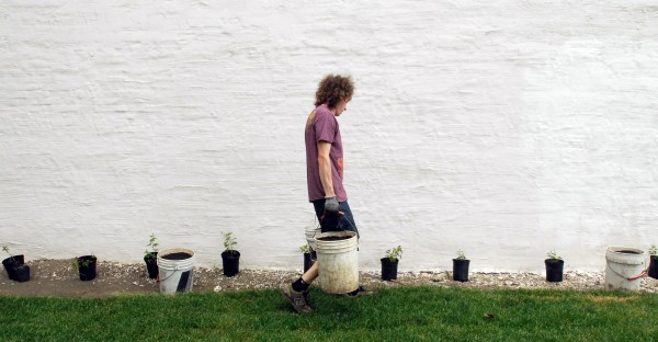 Asa Marsh-Sachs, employee at the Central Street Farmhouse downtown Bangor, carries buckets of soil while planting hops along the wall of the store. The Lundys, owners of Central Street Farmhouse, are transforming the lot next to their business into an organic garden, a test kitchen for brewing beer, canning classes and a multipurpose outdoor space for events.