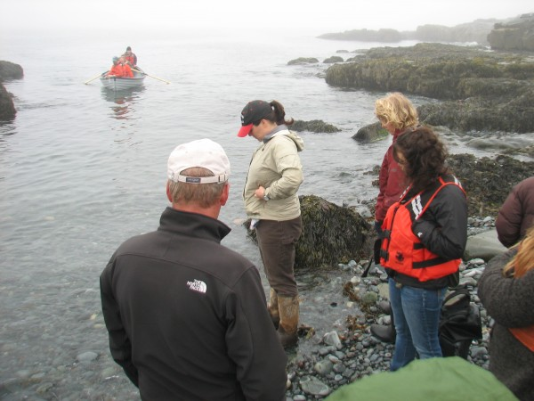 A group of students and staff from College of the Atlantic in Bar Harbor waits on the shore of Egg Rock for more students to arrive at the small island on Tuesday, May 22, 2012. Students and staff from the college traveled to Egg Rock on Tuesday morning to count seabird eggs for the U.S. Fish & Wildlife Service.