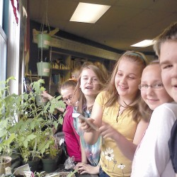 Hampden students (from back to front) Emily Gonthier, Alexandra Buzzini, Madison Elkins, Grace Plaisted, and Jack Burridge check out their seedlings.