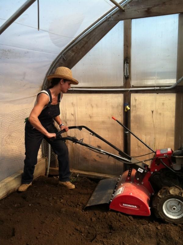 Jacinda Martinez tills soil in the gardens at Primo Restaurant in Rockland.