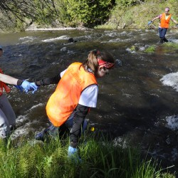 Hotel employees help with streamside cleanup