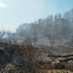 Weather contributing to grass fires in coastal, mid-Maine areas