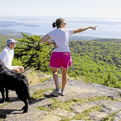 Enjoy a quiet hike along the Asticou Trail