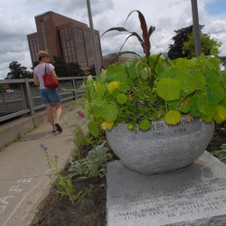 Defying this month's vandalism, Charlie Howard Memorial rededicated