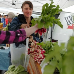 Cold weather shoppers flock to Orono Farmers Market