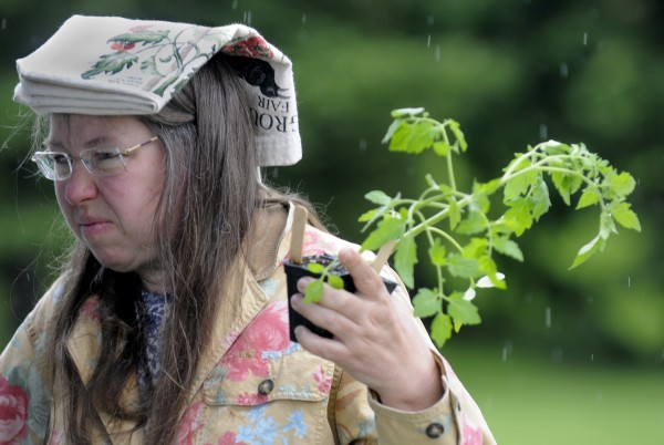 Susan Tremblay of Mariaville uses her canvas shopping bag as a makeshift rain hat as she shops for tomato and summer squash plants at the Bangor Farmers' Market on Sunday afternoon, June 3, 2012.