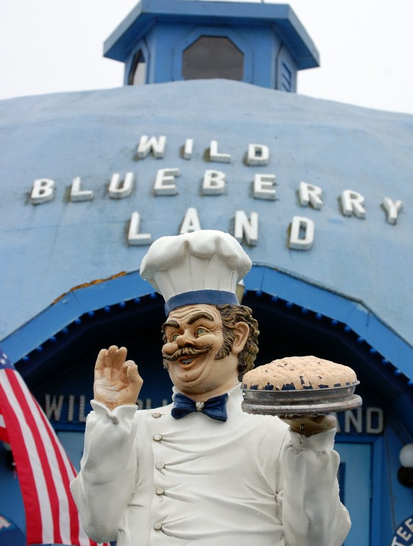Pies rule at Wild Blueberry Land in Columbia Falls, which each summer and fall sells thousands of blueberry pies made with wild blueberries harvested down the road in Addison from barrens owned by the landmark''s owners, Dell and Marie Emerson.
