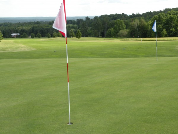 The two flags on the first green at WhiteTail Golf Course in Charleston. Each of its nine greens has two flags to add variety to the round. Golfers choose before the round which color flag they will use on each one. From the first green, the clubhouse is in the treeline to the left of the red flag, and the view on the horizon stretches from the coastal mountains of Mount Desert Island on the left to the midcoast and Camden Hills on the right.