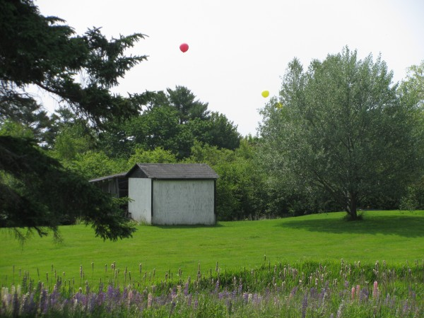 The test balloons used to gather visual data on the controversial proposed LPG tank project loomed off Old Route 1, about a quarter mile away from the project site in the Mack Point industrial zone.