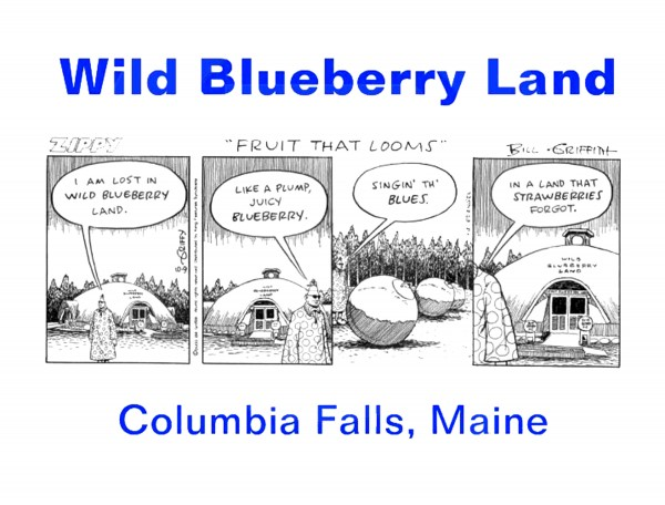 "Wild Bluberry Land once was featured in artist Bill Griffith''s nationally syndicated cartoon strip ""&quotZippy.""&quot In a strip that ran in October of 2003 under the heading ""&quotFruit That Looms,""&quot the strip''s main character, Zippy the Pinhead, finds himself wandering the complex ""singing' th'e blues"" in what he terms ""a land that strawberries forgot."""