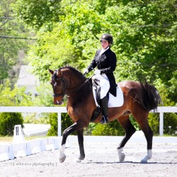 Fairfield man to be inducted into dressage hall of fame on Saturday