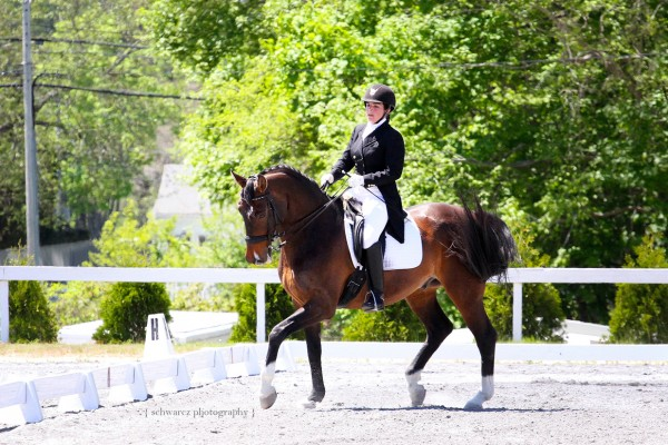 Local dressage competitor Bryn Walsh of Newburgh, on her horse, Faveroux, has started competing at the Grand Prix level — the same level that Olympic riders compete in.