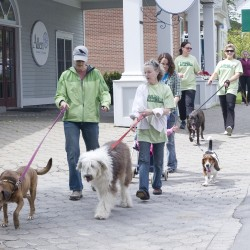 Annual Mutt Walk to benefit midcoast animal shelter