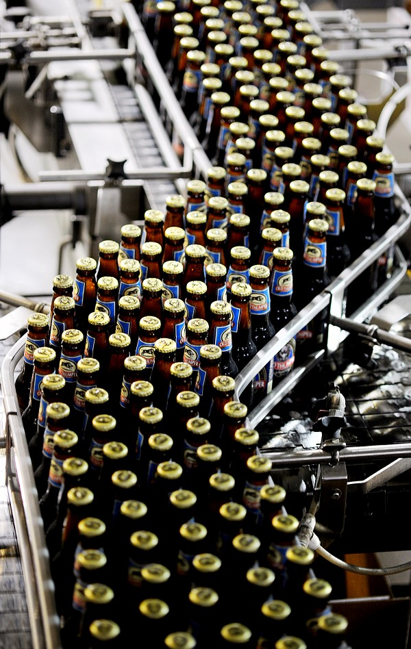 Bottles of Old Thumper ale gather for packaging at the Shipyard Brewing Company in Portland.