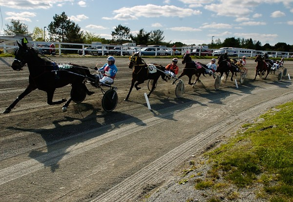 Drivers and their horses round the track in 2011.