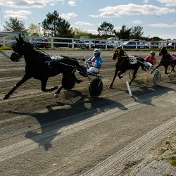 And they're off! Heat cancels racing at Bangor, Scarborough