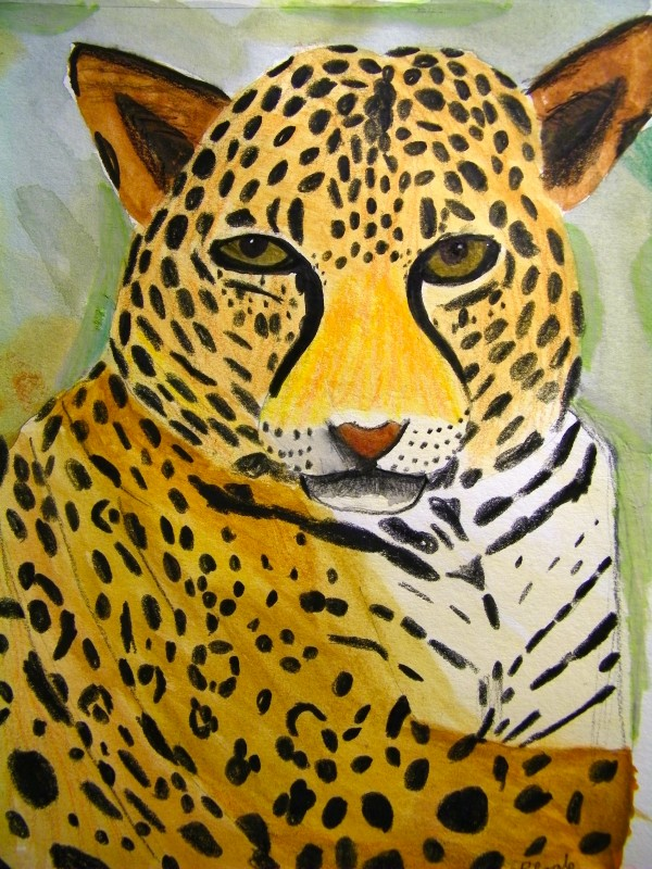 &quotLeopard&quot by Reggie Kollman age 14 of Bangor Student of Valerie Wallace.  Please call 866-4338 for information about  Lessons and Summer art Camps.