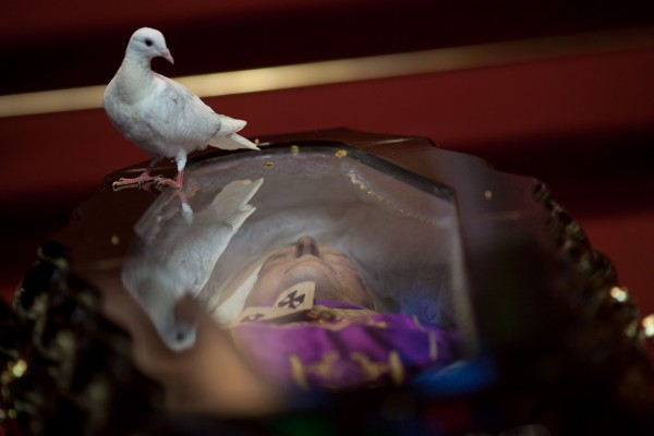 A dove perches on the glass-top coffin of Brazilian Cardinal Eugenio Sales, during his funeral in Rio de Janeiro, Brazil on Tuesday, July 10, 2012. Sales, Archbishop Emeritus of Rio de Janeiro, provided shelter to thousands of opponents of the military regime that once ruled Brazil and to political refugees fleeing the dictatorships of Argentina and Chile. Sales died in his home late Monday night of a heart attack. He was 91.