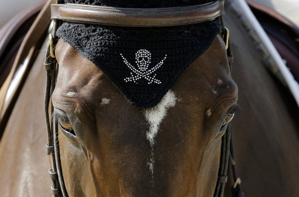 The horse Oregon De La Vigine of France. whose rider is Denis Mesples, has a cover with a skull on its head during a training session at Greenwich Park, the site for the equestrian and modern pentathlon events at the 2012 Summer Olympics, on Wednesday, July 25, 2012, in London.