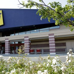 Best Buy CEO resigns amid internal investigation